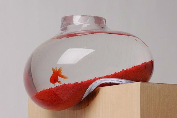 Забавен дизайн на аквариум