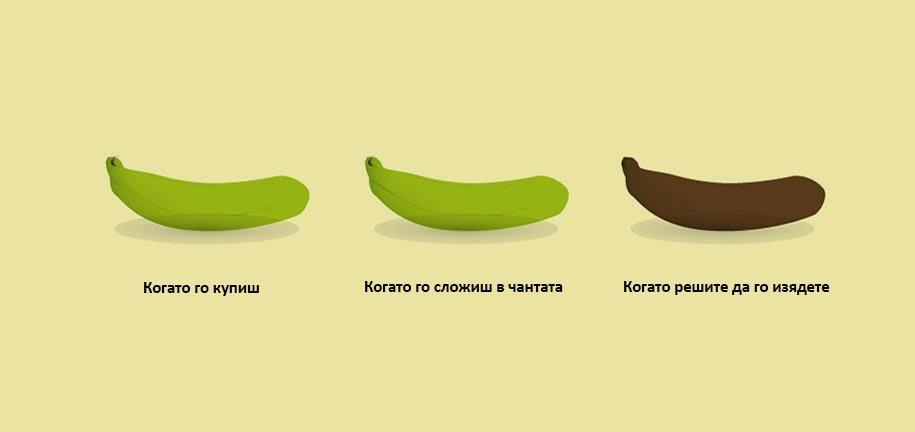 Фазите на банана
